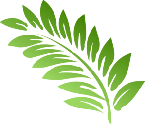 Free Fern Cliparts, Download Free Clip Art, Free Clip Art on.