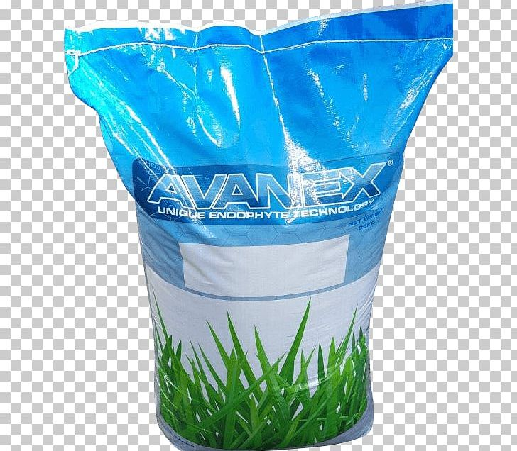 Aircraft Tall Fescue Flowerpot Plastic Water PNG, Clipart.