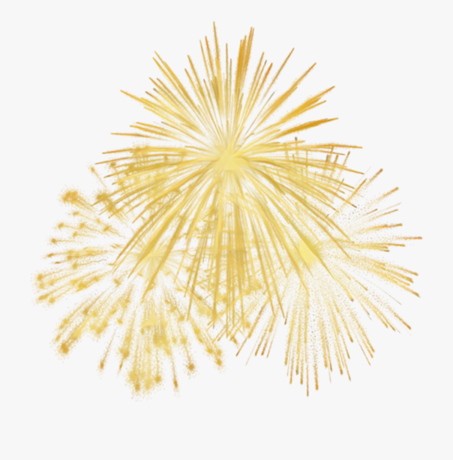 gold #firework #feuerwerk #feudartifice.