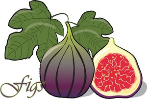 Free Fig Cartoon Cliparts, Download Free Clip Art, Free Clip Art on.
