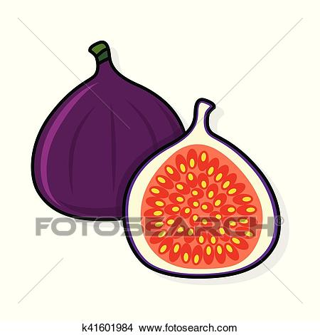 Fig on a white background. Clipart.