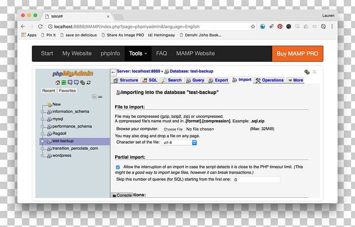 Computer Program Online Advertising Web Page Multimedia PNG.