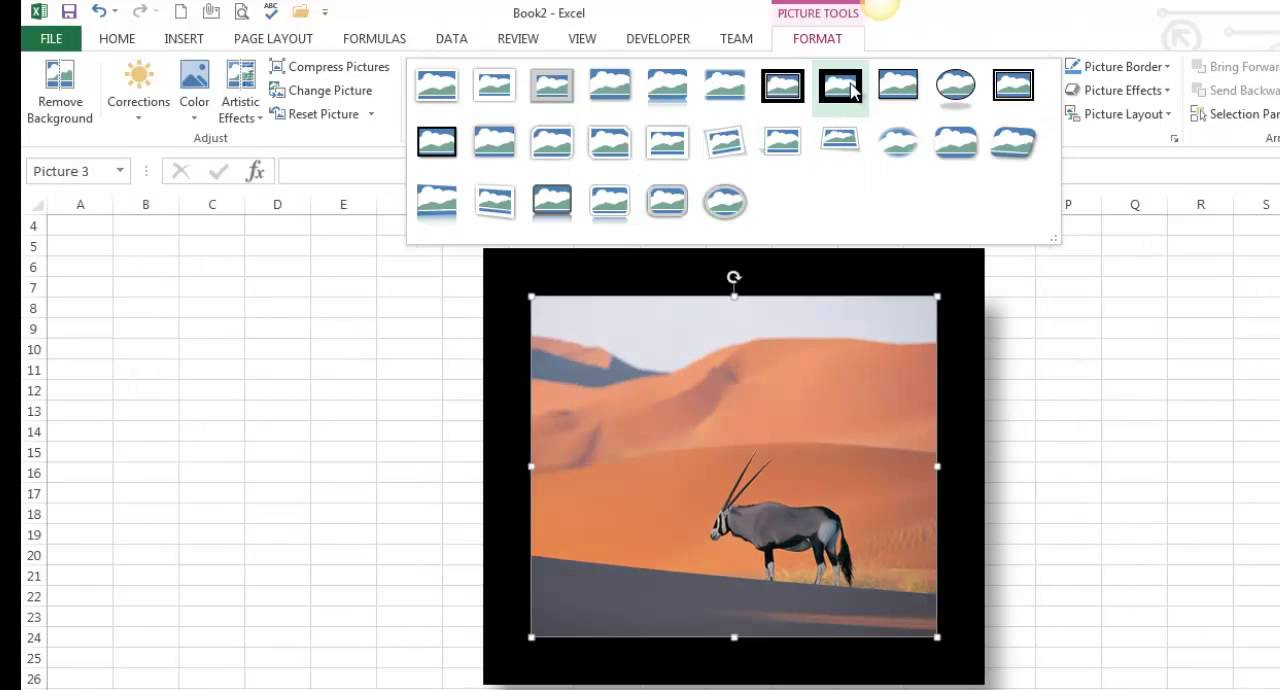 Insert and Format Pictures / Online Pictures / Clip Art in Excel 2013.