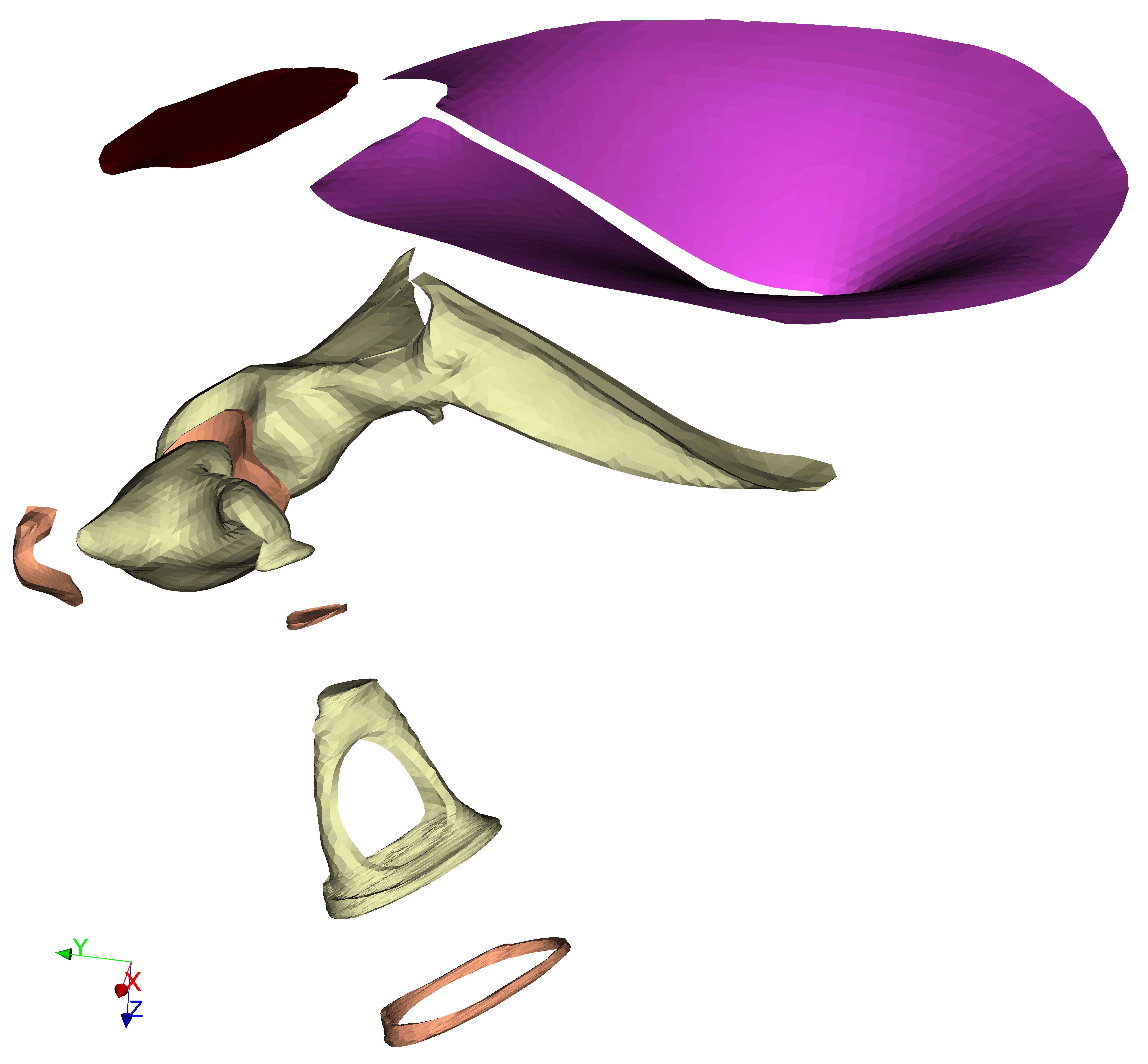 AudiLab software: Modelling: Fie.