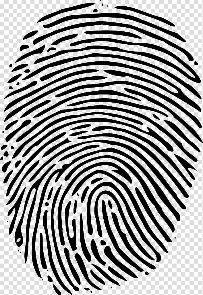 Fingerprint Human Resources Organization Book Management.
