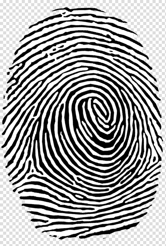 Fingerprint , Fingerprint Authentication , fingerprint.