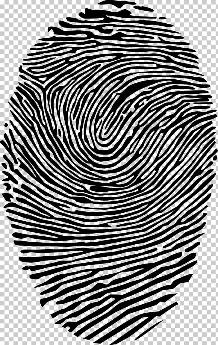 Fingerprint Spiral , finger print PNG clipart.