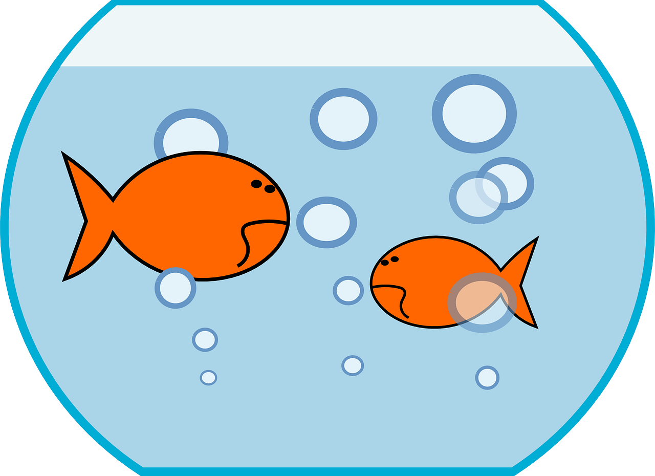 Fish Bowl Clipart Fish Pond Pencil And In Color Bowl.