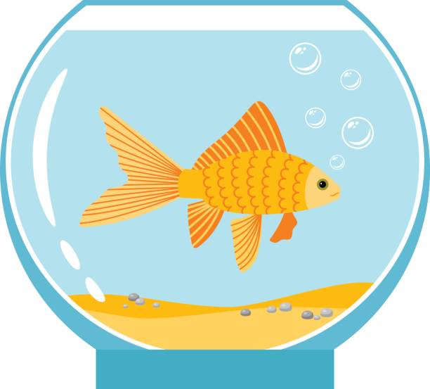Best Fish In Bowl Illustrations, Royalty.