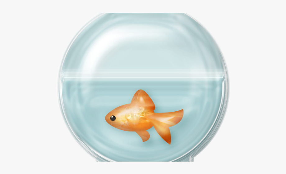 Fish Bowl Clipart Black And White.