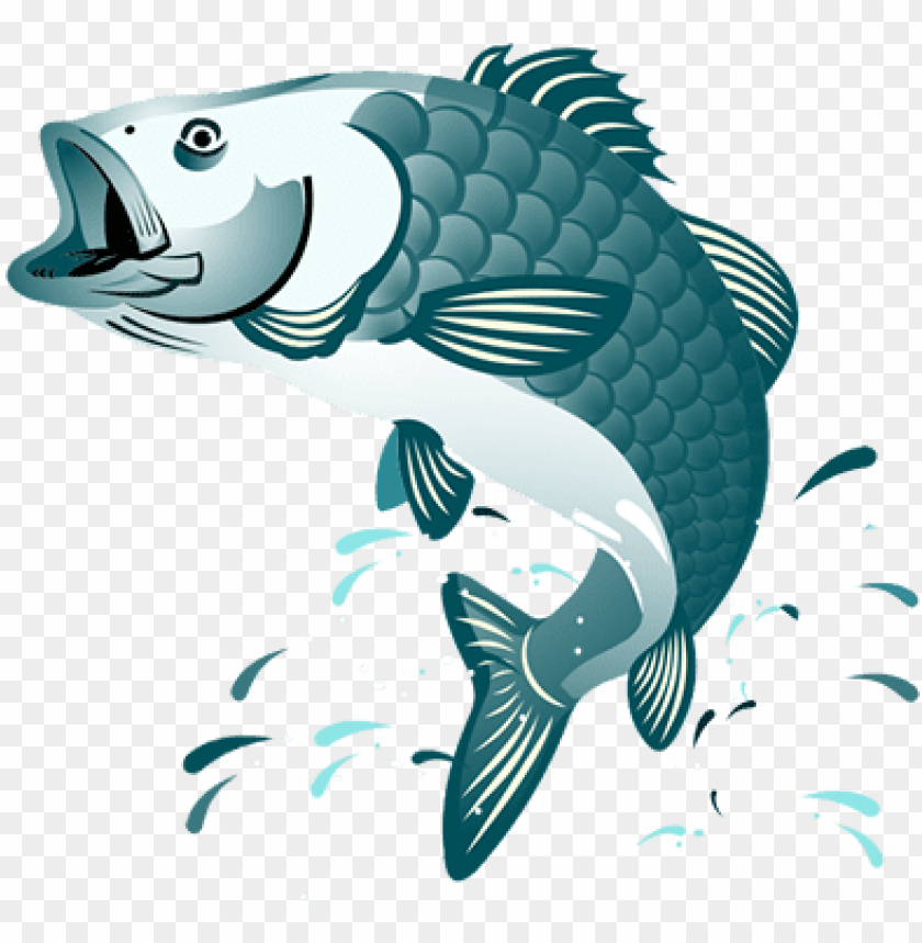 fish jumping clipart PNG image with transparent background.