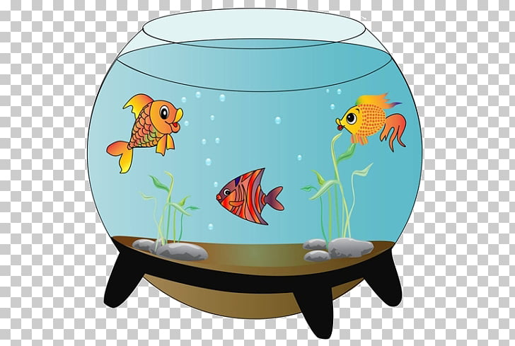 Carassius auratus Siamese fighting fish Aquarium , Cartoon.