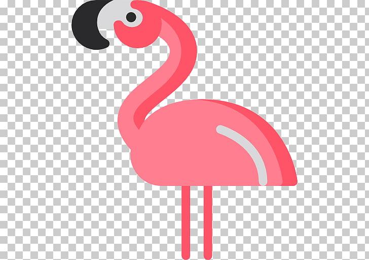 Flamingos Computer Icons Bird Photography, flamingo PNG.