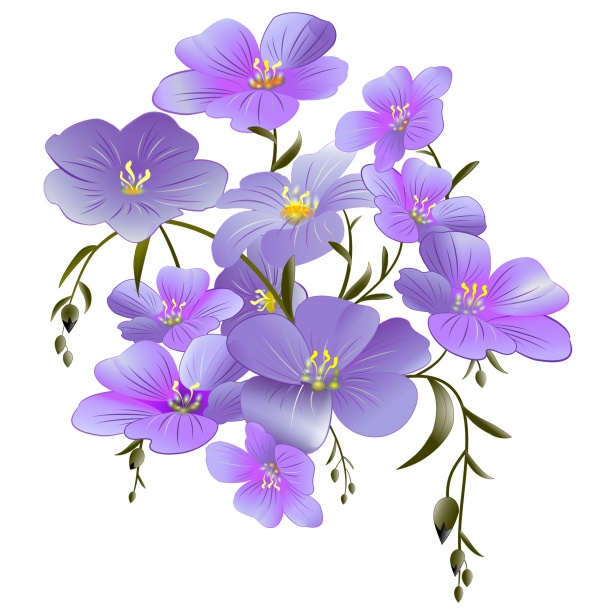 Flowers Clipart Purple Free Stock Photo.