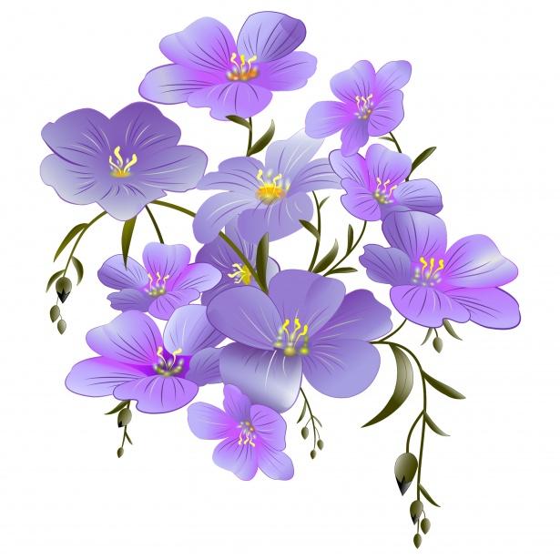 Flowers Clipart Purple Free Stock Photo.