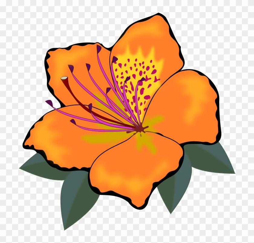 Clip Art, Flor, Flora, Flores, Flower, Nature, Plant.