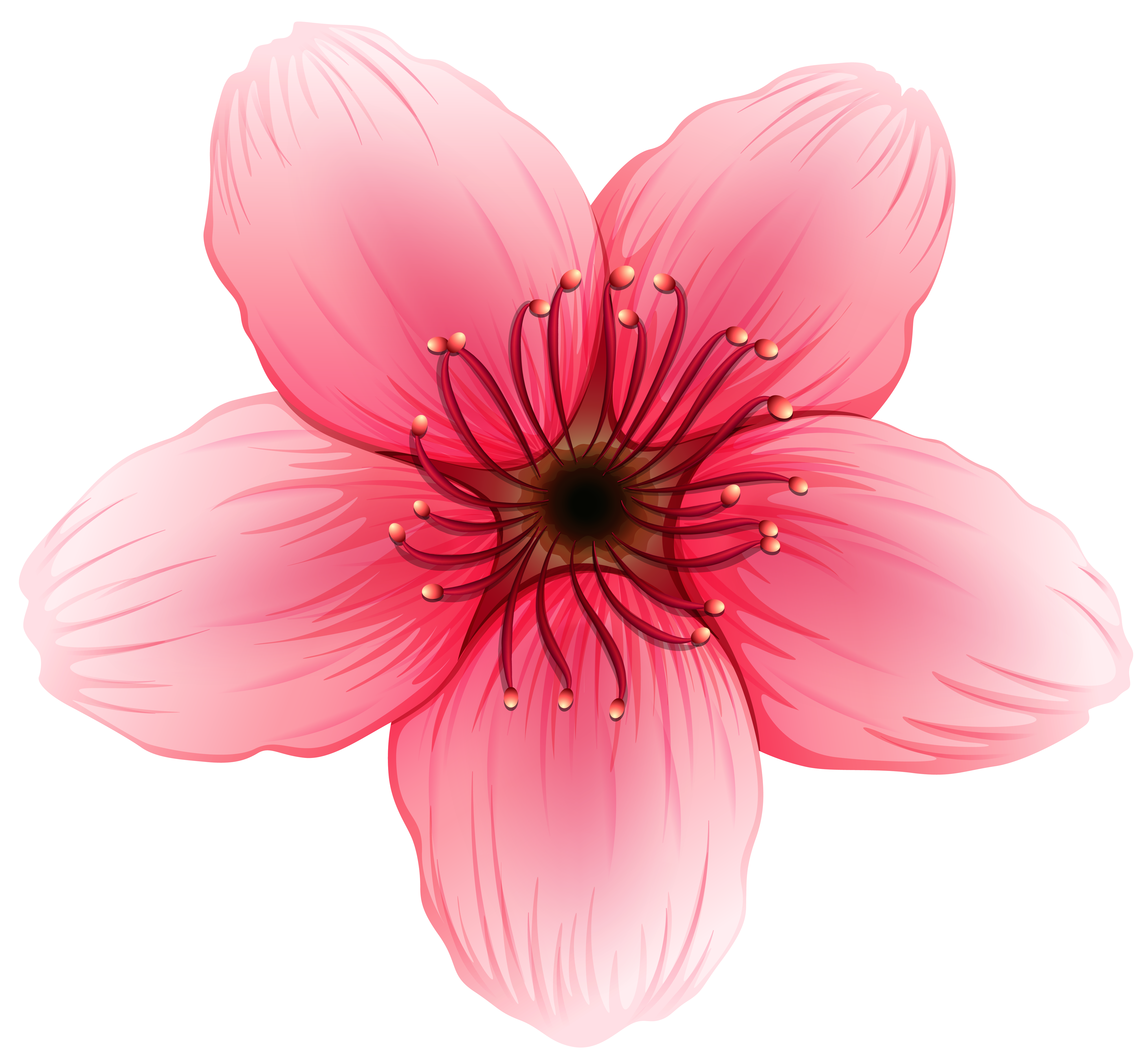 Flower PNG Clipart Image.