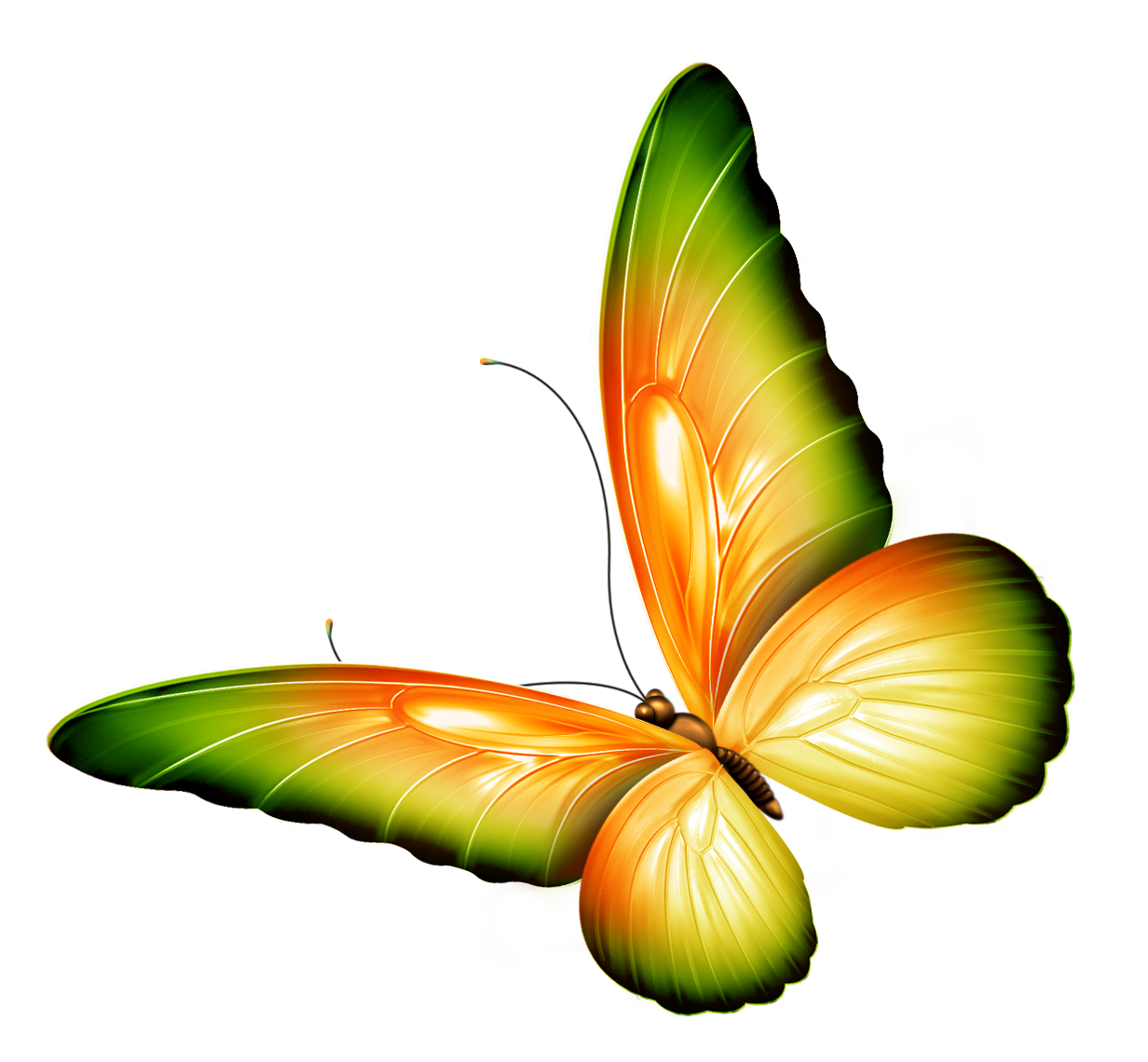 Clipart Flowers And Butterflies Border.