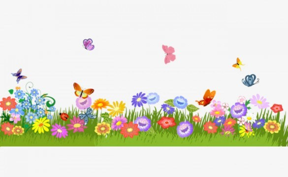 Quiz: How Much Do You Know about Clipart Flowers And Butterflies.