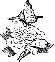 Butterfly Garden Clipart Black And White.