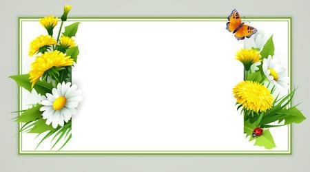 15,019 Butterfly Border Stock Illustrations, Cliparts And Royalty.