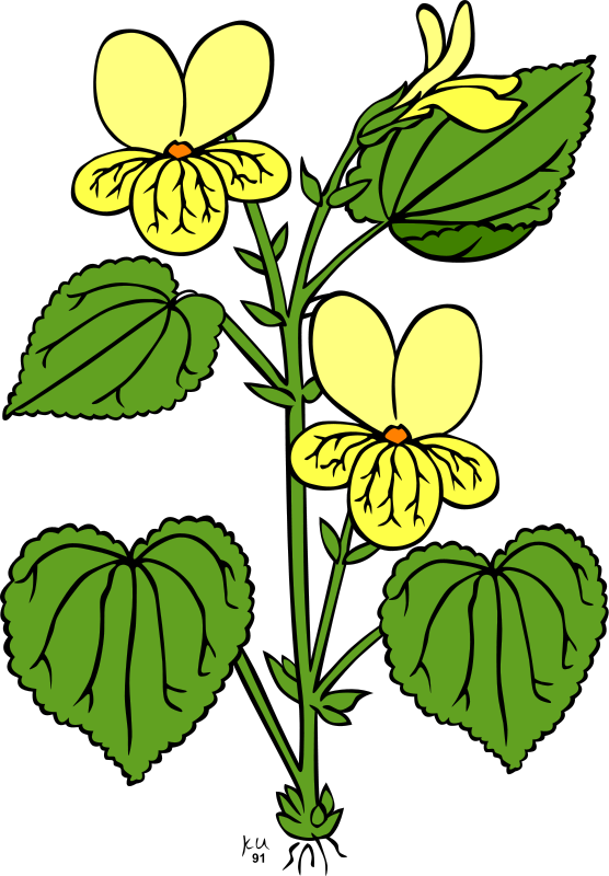 Flower Clipart Royalty FREE Images Gallery9.
