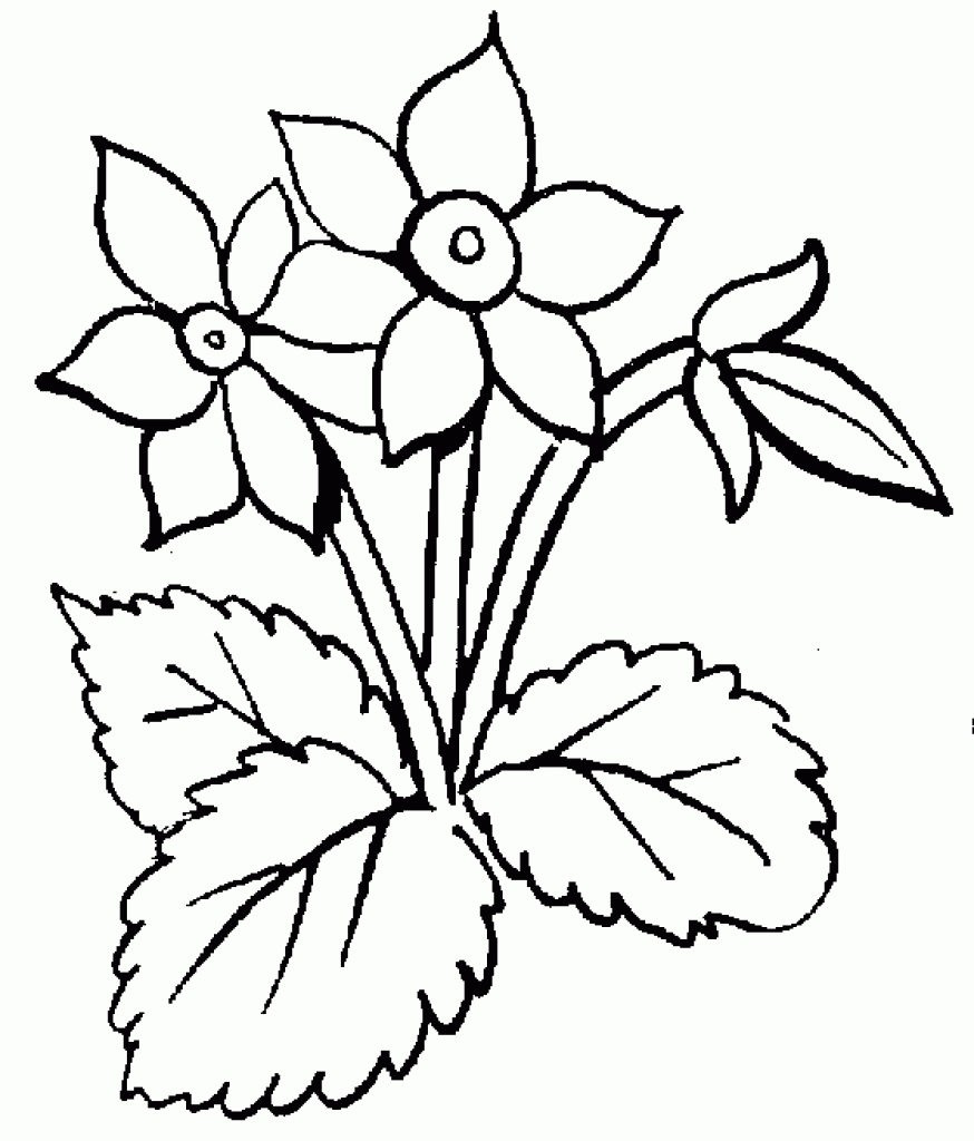flower black and white free clip art flowers black and white.