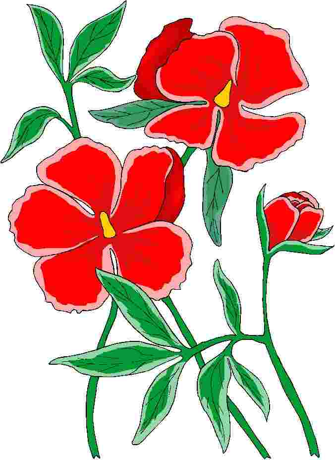 Best Cliparts: Schiffbruch Clipart Of Flowers Flores Rojas.