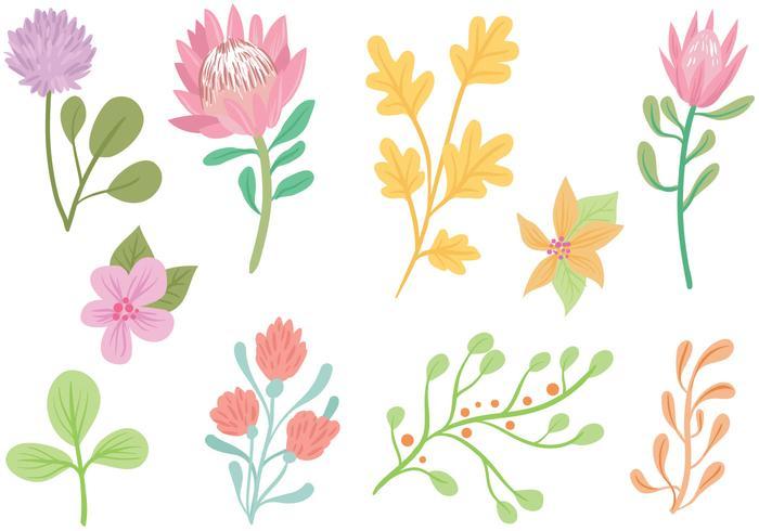Free Pastel Flowers Vectors.