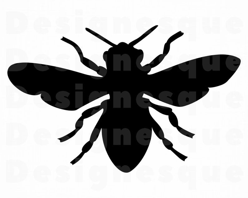 Fly #5 SVG, Fly Svg, Flies Svg, Insect Svg, Fly Clipart, Fly Files for  Cricut, Fly Cut Files For Silhouette, Fly Dxf, Png, Eps, Fly Vector.
