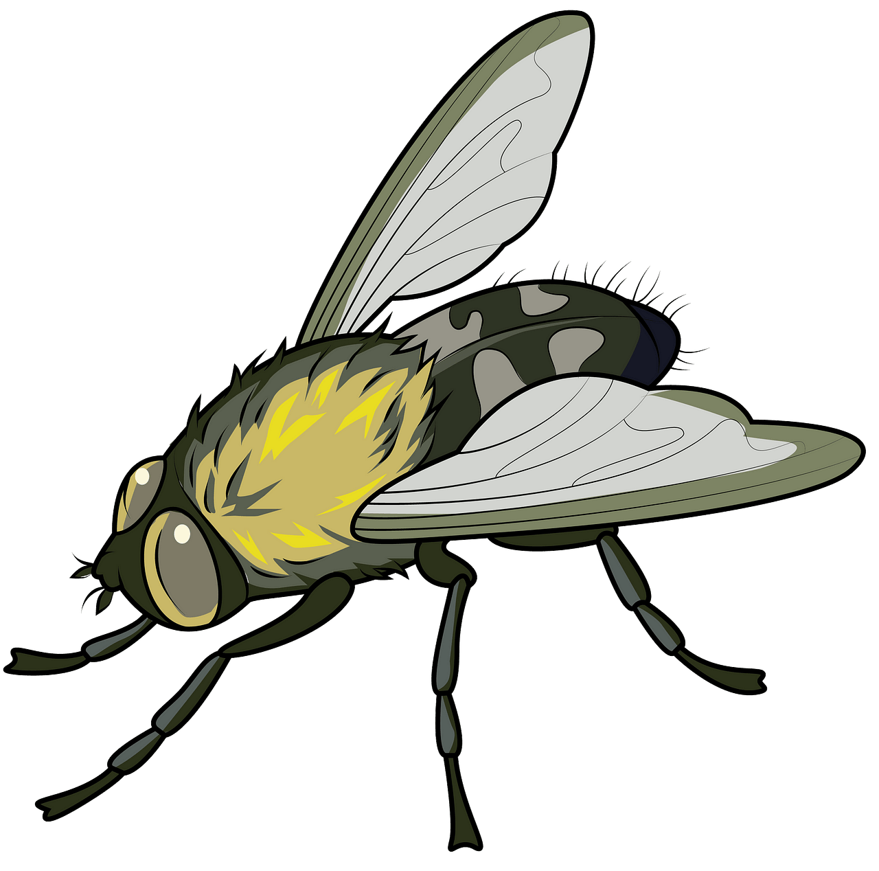 Cluster Fly clipart. Free download..