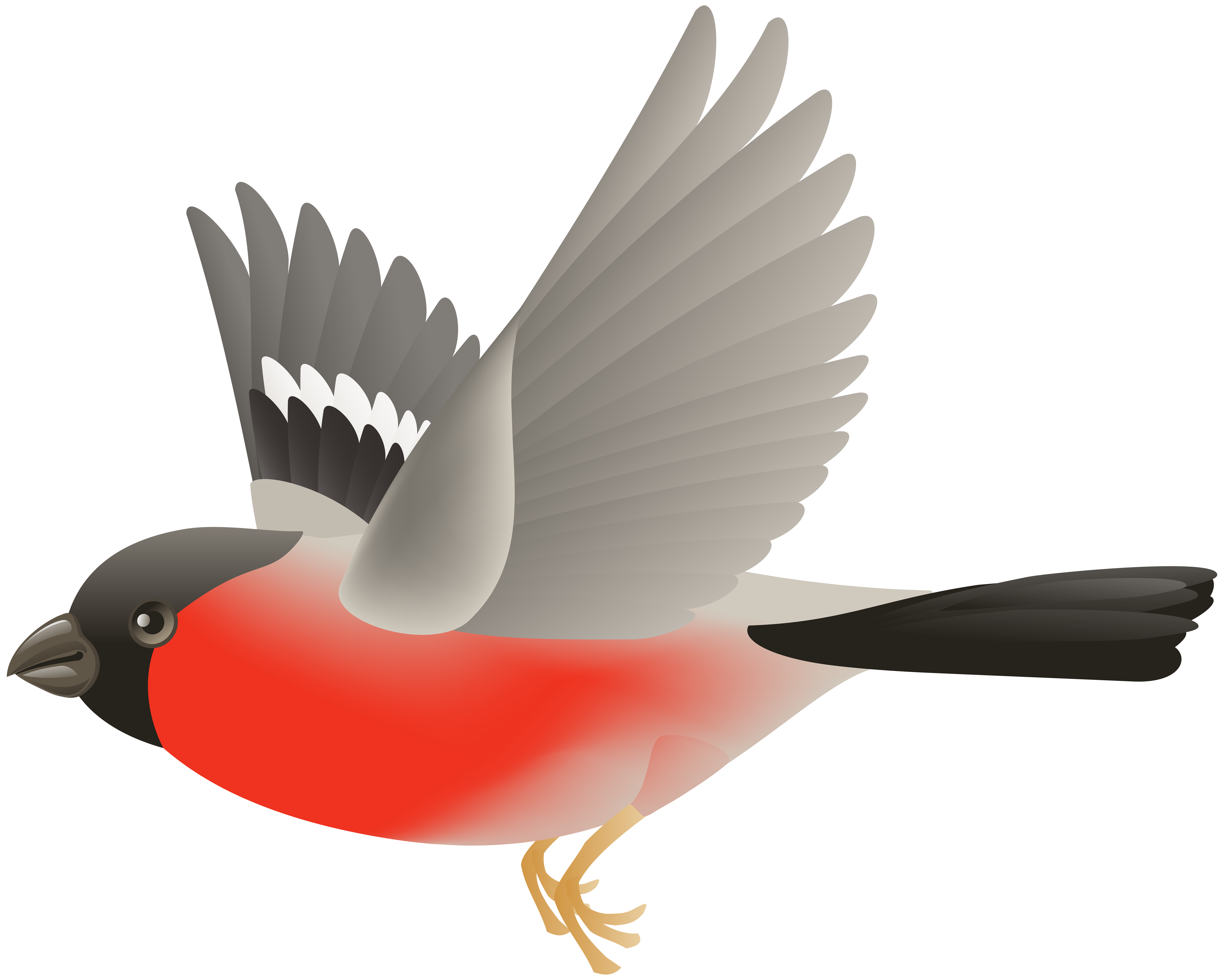 Red Flying Bird Transparent Clip Art Image.