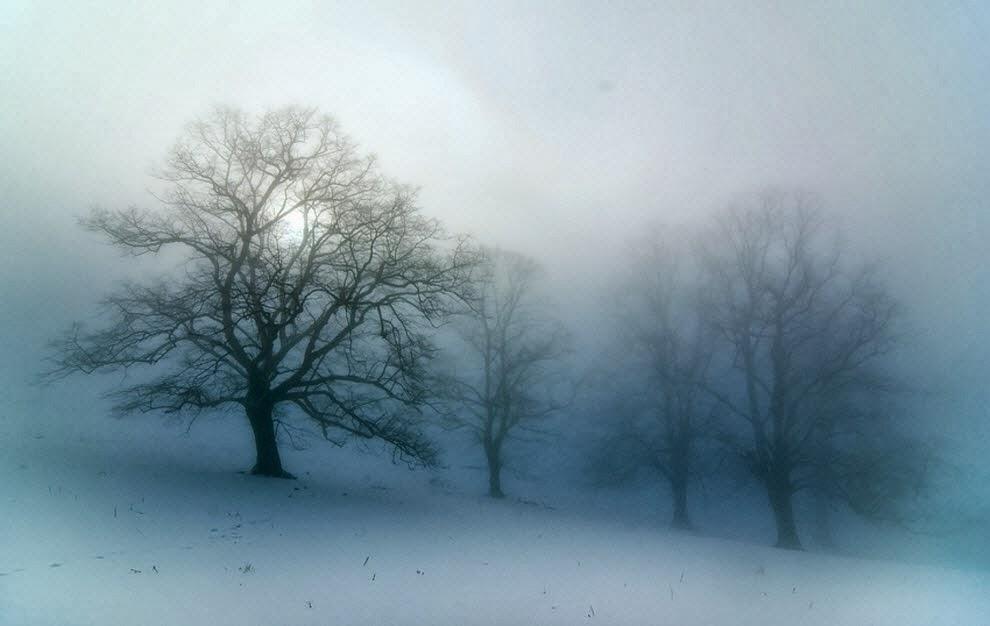 Fog Clipart foggy day 1.