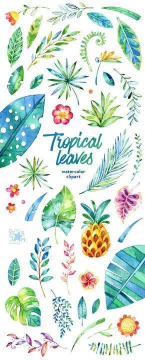 Foglie tropicali. 44 elementi floreali clipart.