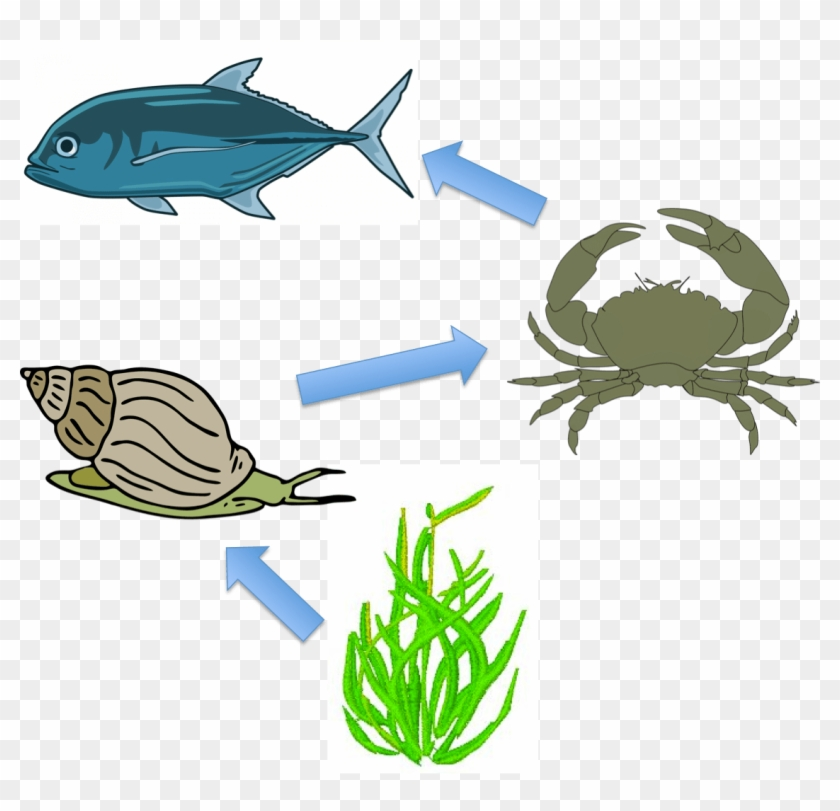 Download Clipart.