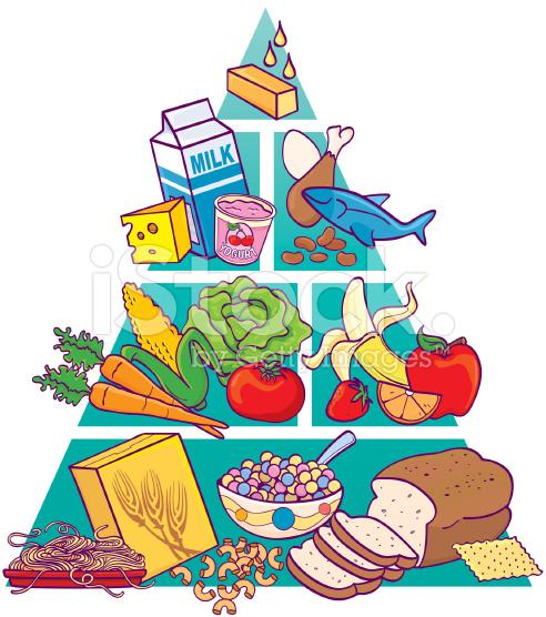 food pyramid clip art #38.