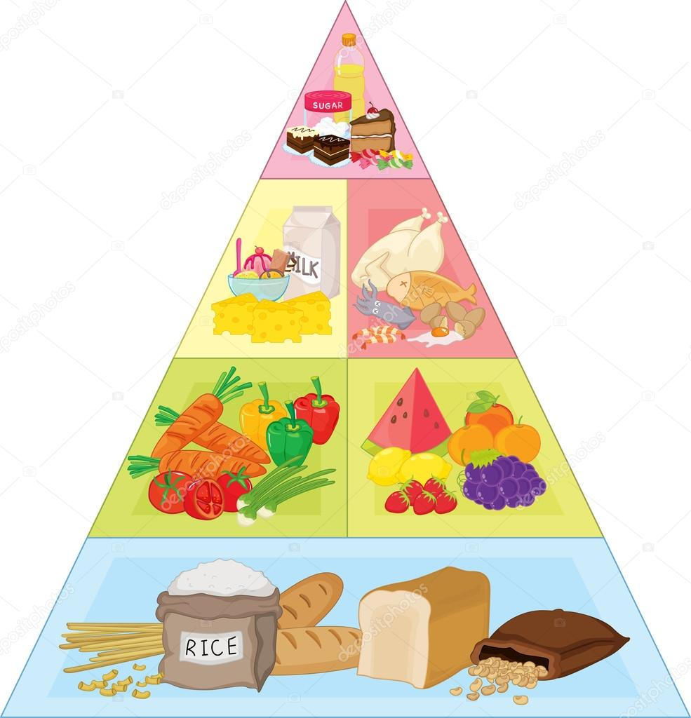 Food pyramid — Stock Vector © interactimages #10277421.