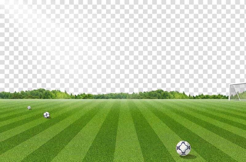 Soccer field under sunlight illustration, Football pitch.