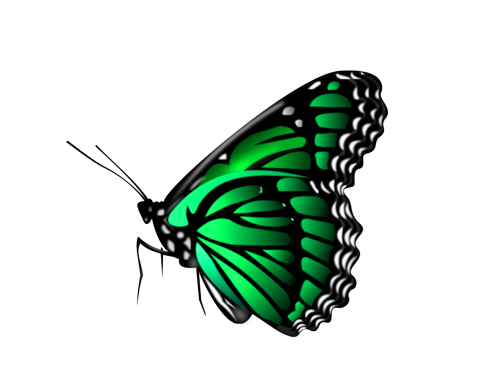 Pin by Meme Loverz on Clipart PNG in 2019.