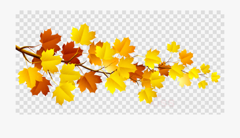 Autumn, Yellow, Leaf, Transparent Png Image & Clipart.