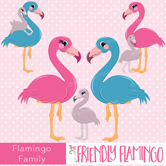 Flamingo family clipart, pink flamingo, invitation graphics.