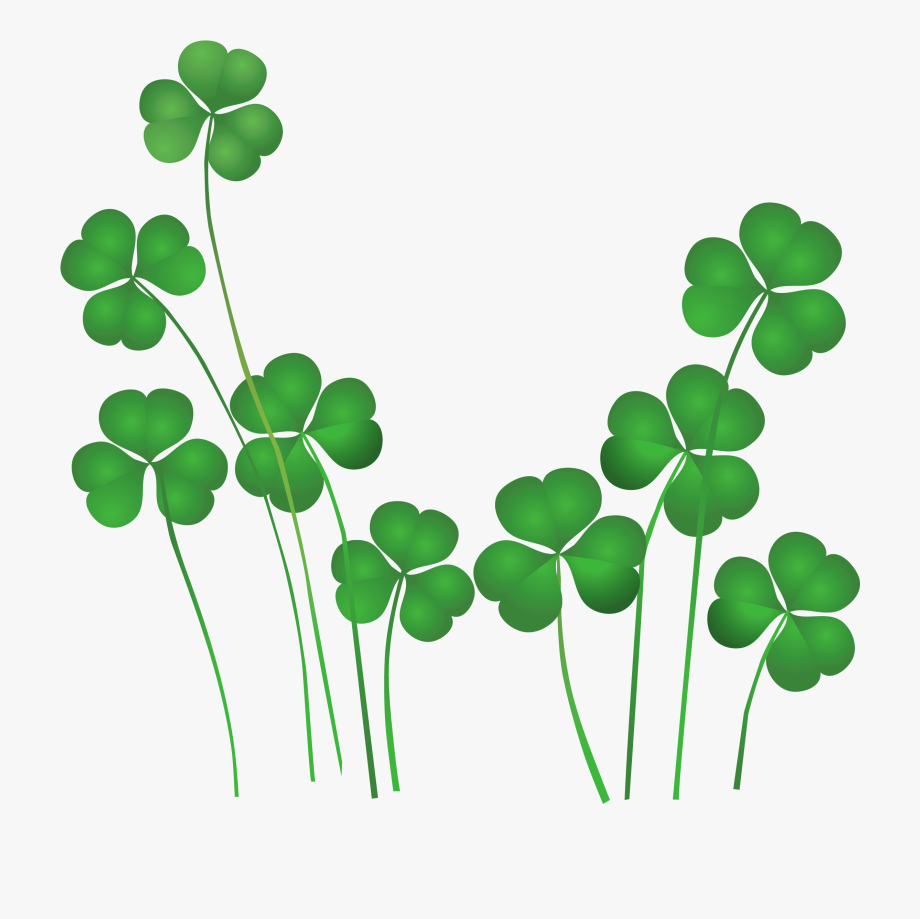 St Patricks Day Shamrocks Decor Png Clipart.