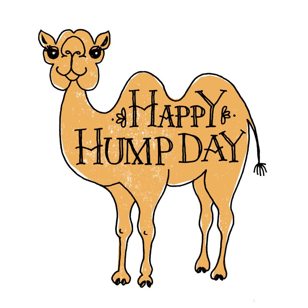 Happy Hump Day!.