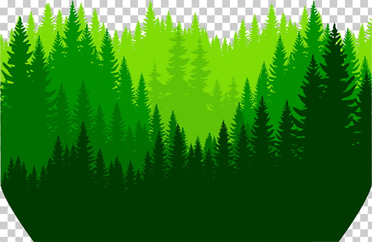Euclidean Icon, painted deep forest PNG clipart.