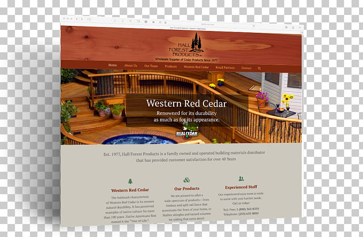 Western redcedar Western Forest Products Forestry, creative.