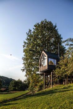 Modern Tree Houses.
