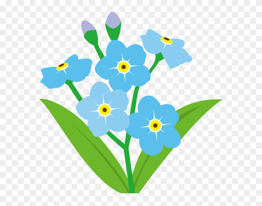 Forget Me Not Flower Clip Art.