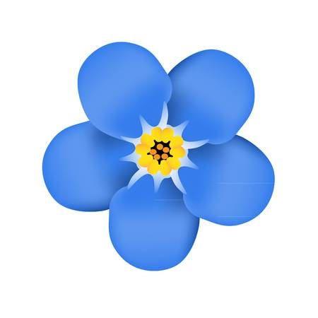 1,957 Forget Me Not Stock Illustrations, #805986.
