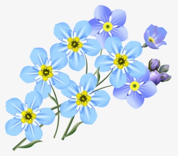Free Forget Me Not Clip Art with No Background.