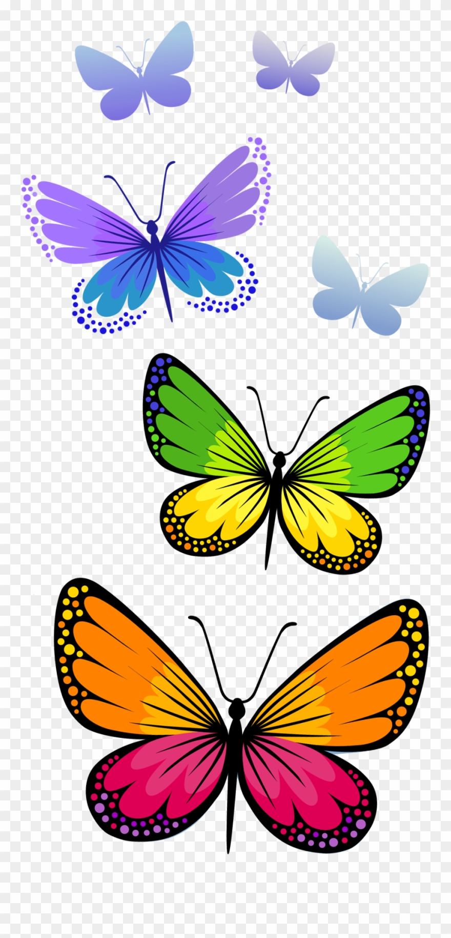 free butterfly pictures clipart #7